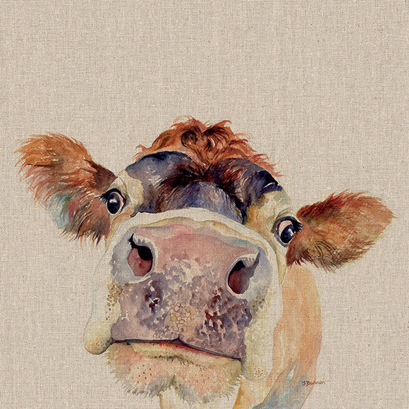 Harry Hereford Cow Canvas Picture