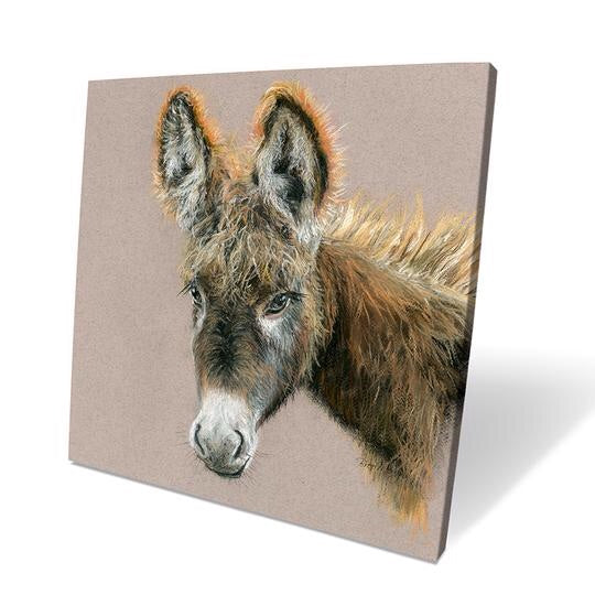 Duncan Donkey Box Canvas Picture