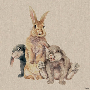 Collection Of Rabbits Canvas