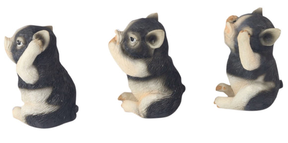 3 Wise Pigs See/Hear/Speak No Evil