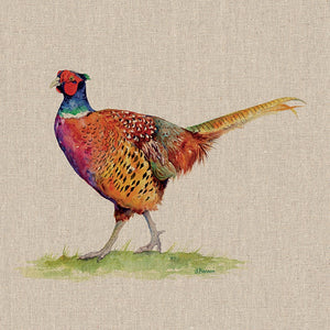 Mr Granville The Pheasant