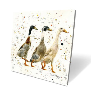 The Three Duckgrees Box Canvas Picture
