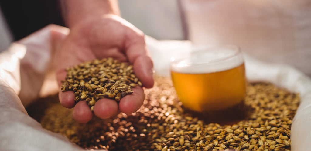 Moving from Extract to All Grain Brewing: What You Need To Know.