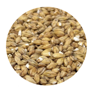 Acidulated Malt - Best Malz (per lb)