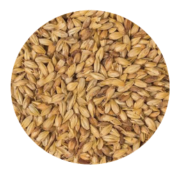Crystal 15° Malt - Great Western (Per lb)