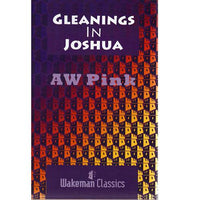 Gleanings in Joshua