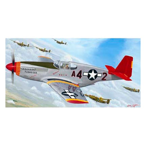 """Red Tail by Request"" P-51C Mustang Print"