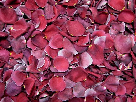 Freeze Dried BURGUNDY Rose Petals, PERFECTLY PRESERVED