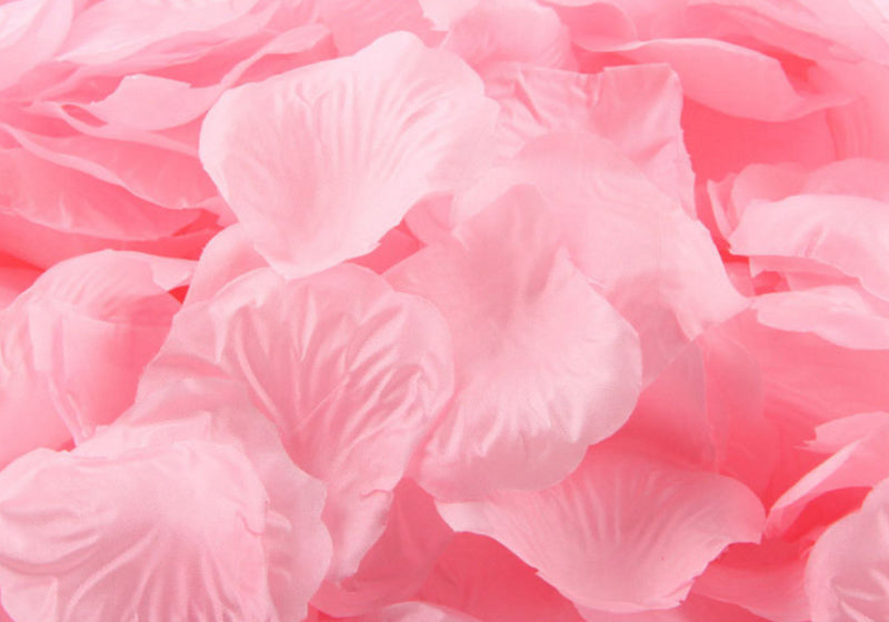 Floating silk rose petals 100 count blush crate floating silk rose petals 100 count mightylinksfo