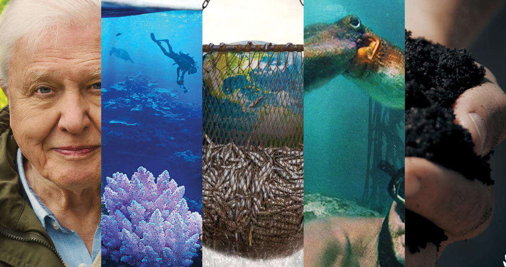Sherpani's Top Five Picks for Must See Environmental Documentaries