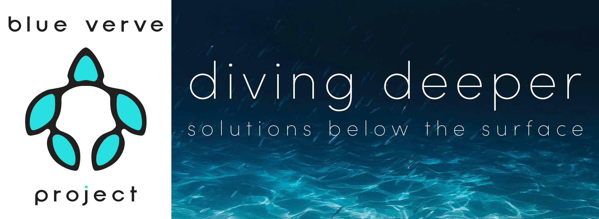 Blue Verve Project, Diving Deeper