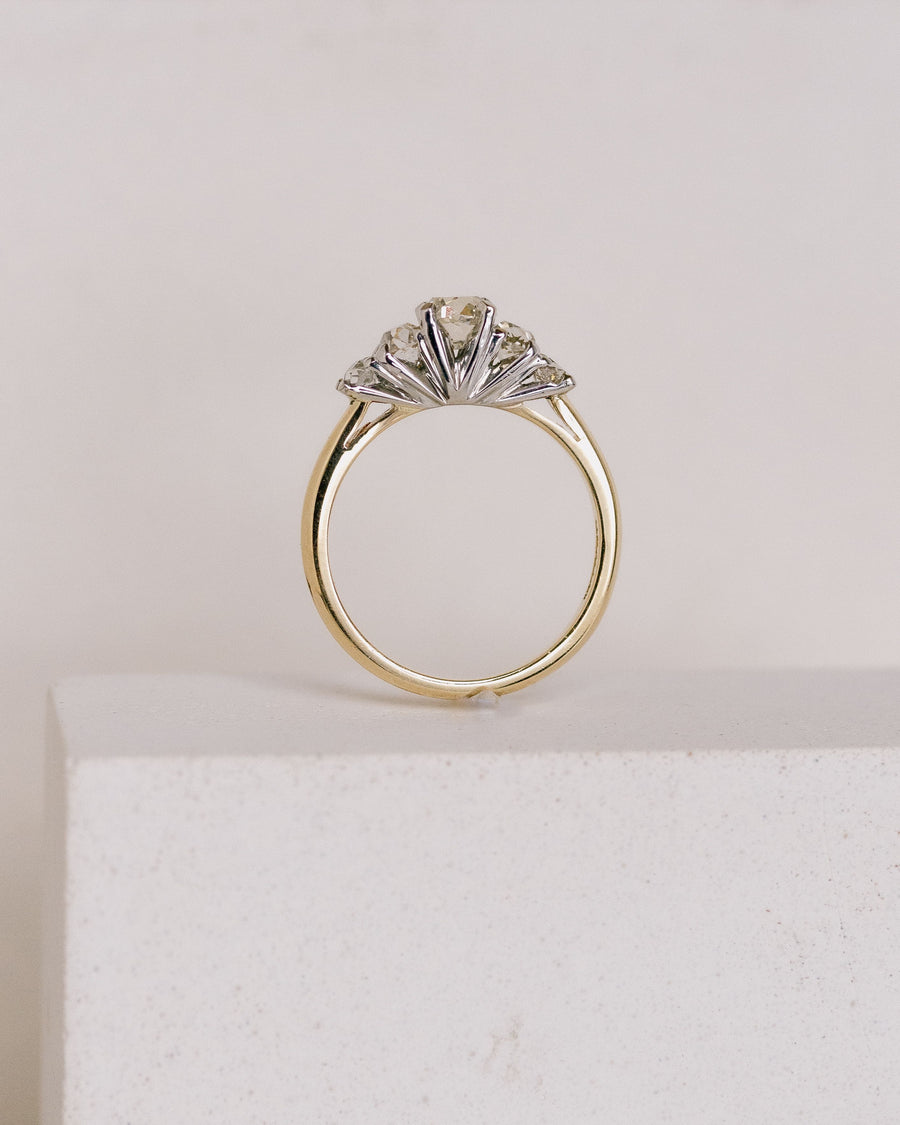 The Sayre Ring