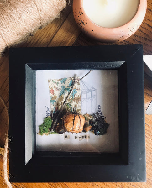 'Hi pumpkin' shadow Box