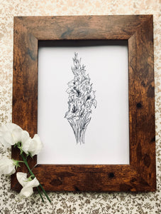 August birth flower illustration - Gladiolus