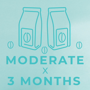 Moderate- 3 month paid subscription-Rotating-Neon Coffee Company