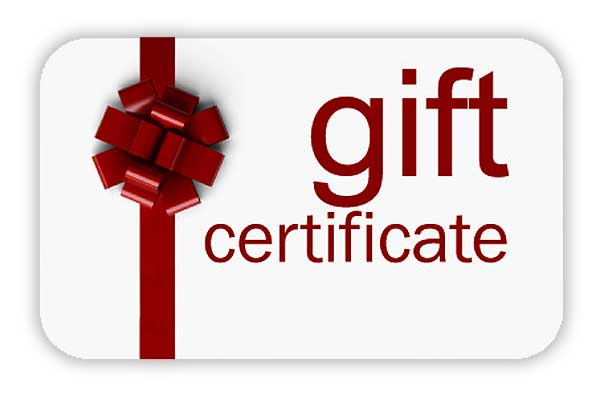 "Gift Certificate ($50 - $500) to Make a ""Down Payment"" & Finance the Rest"