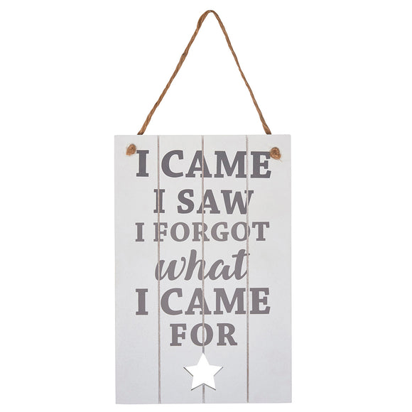 Wooden sign with vintage chic look. Includes slogan: I Came, I Saw, I Forgot What I Came For