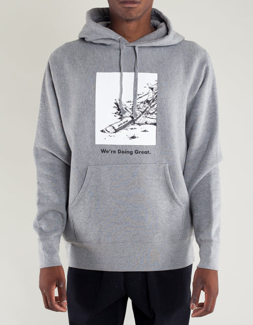 FA We Are Doing Great Hoodie Heather Grey