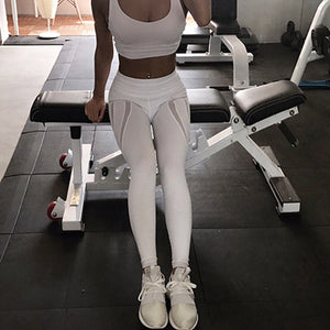 White Mesh Yoga Pants - Gym or Running