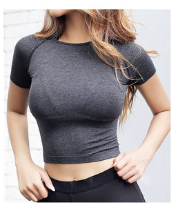 Women Cropped Seamless Short Sleeve Yoga Top