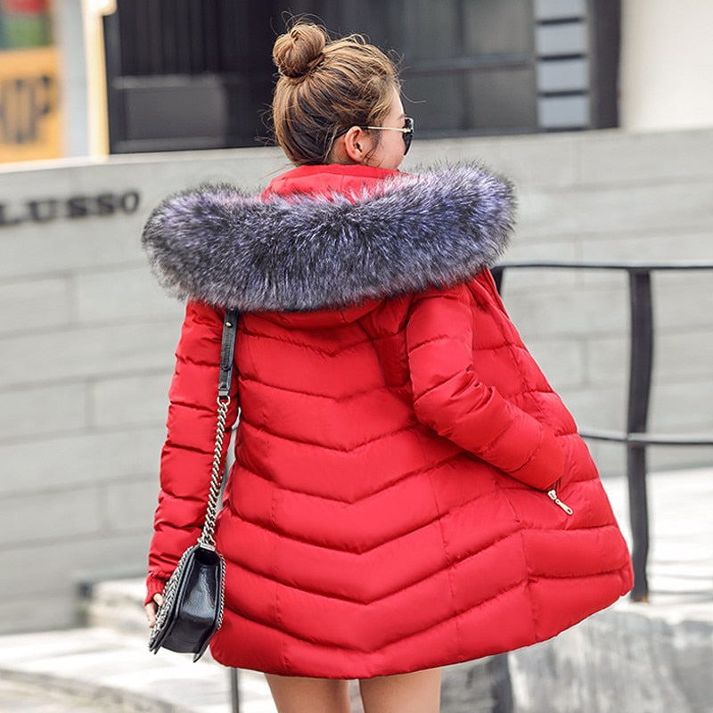 Womens winter jackets and coats - Parkas for women 4 Colors With a Hood Large Faux Fur Collar