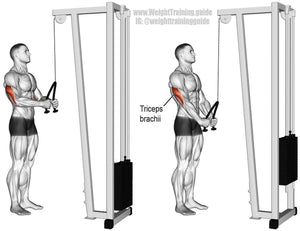 Lat pulldown + Low row with 125kg weight stack