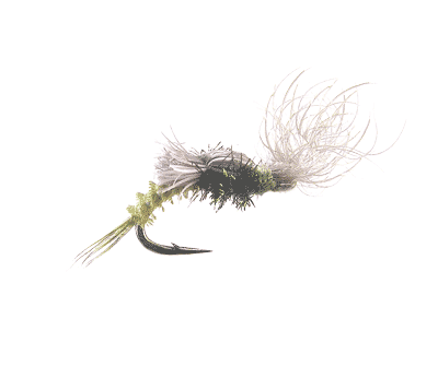 Ross' Splitwing Snowshoe Emerger