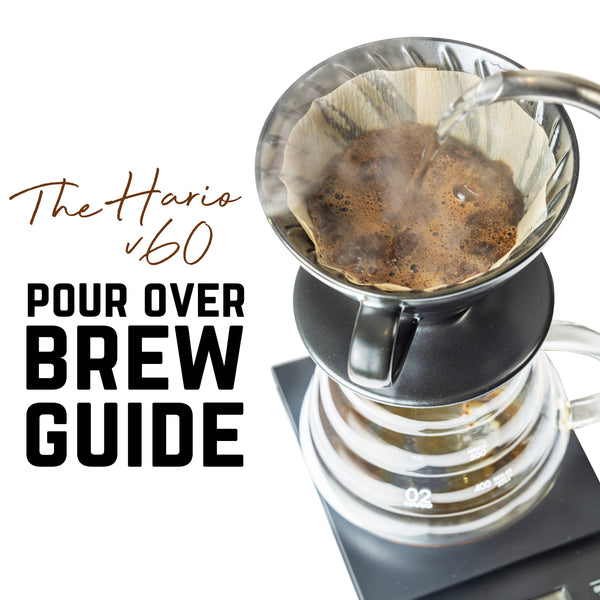 The Brew Guide - Hario V60 Pour Over