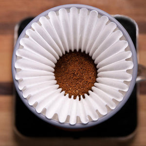 Espro Bloom Pour Over Brewer
