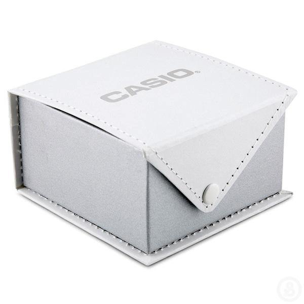 Casio Watch Box