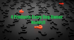 4 Products Every Dog Owner Needs
