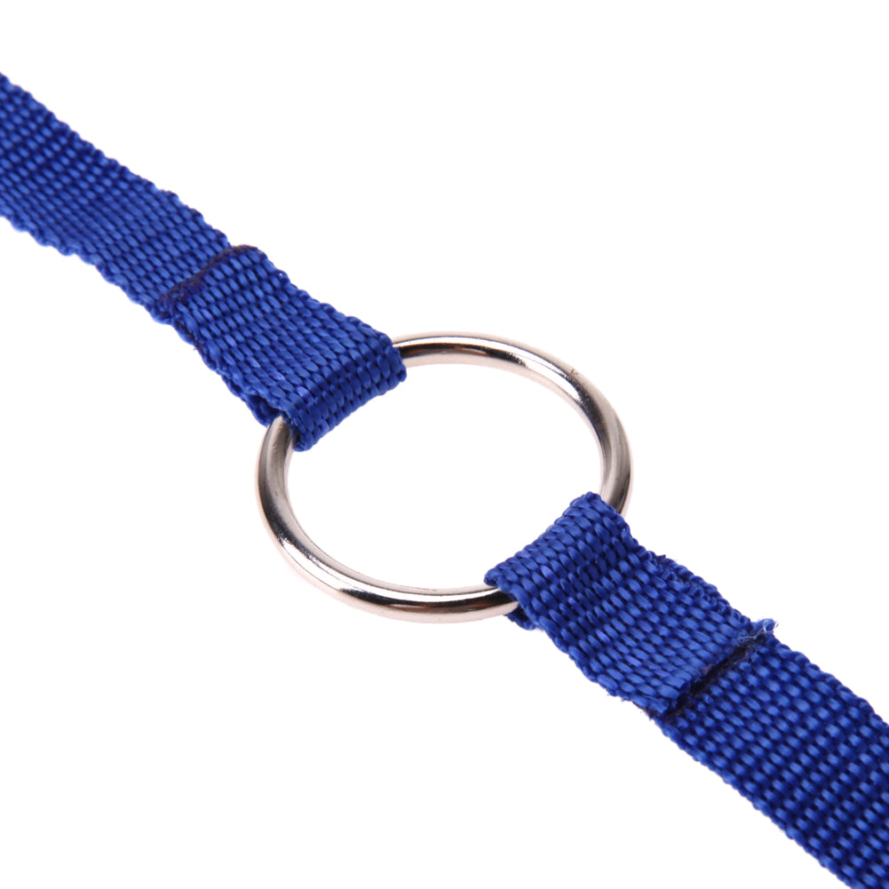 Double Nylon Dog Leashes