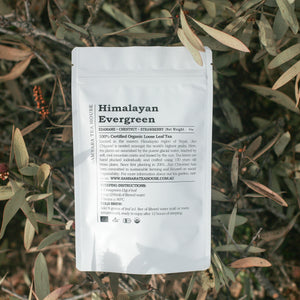 Himalayan Evergreen