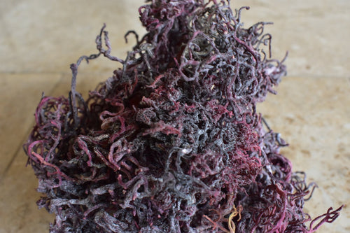 St.Lucia Purple Sea Moss - 100% WildCrafted Deep Ocean - High Mineral Content - Derek Product