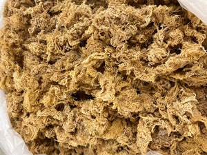 Gold - 100% Wild Crafted - St. Lucia Sea Moss WHOLESALE Derek Product