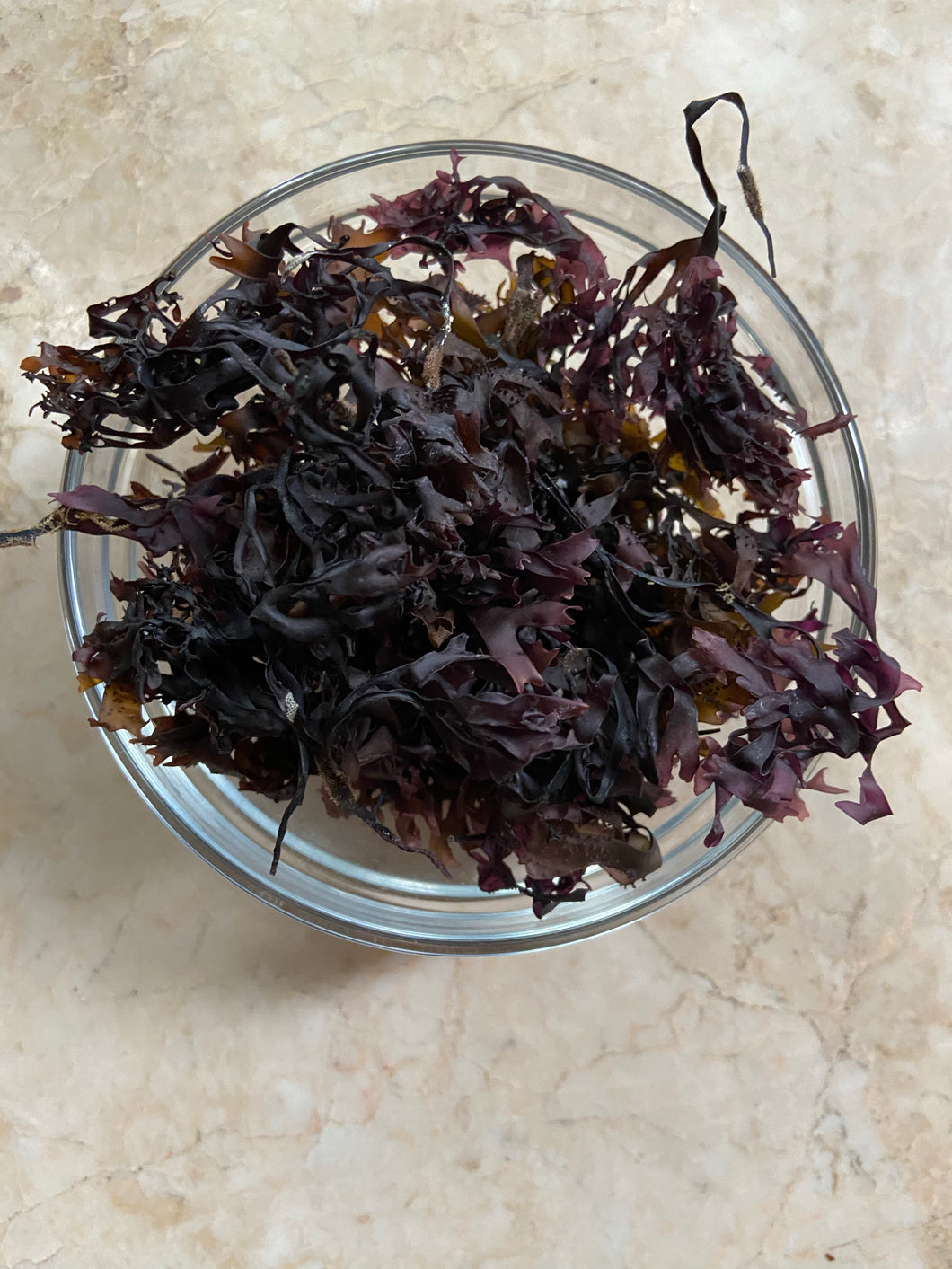 100% Purple Organic Chondrus Crispus - Irish Moss- Ireland Imported - - DerekProduct