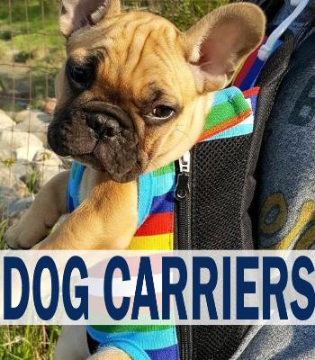 the latest 308f0 97d42 Carriers   Travel · Dog ...
