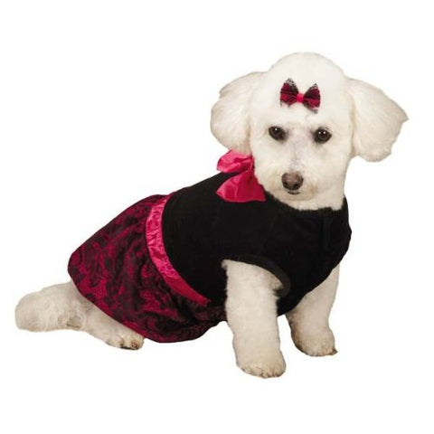 Zack and Zoey Heritage Collection Lace Print Dress for Dogs BLACK-DOG-Zack & Zoey-XX-SMALL-Pets Go Here black, dog dress, m, zack & zoey Pets Go Here, petsgohere