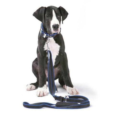 Patento Dog Vario Leash with Car Adapter BLUE-DOG-PatentoPet-Pets Go Here 4 ft, black, blue, mirage, nylon, red, reflective Pets Go Here, petsgohere