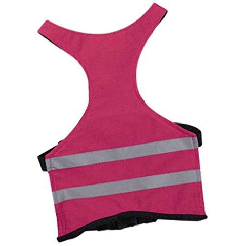 Guardian Gear Brite Reflective Dog Safety Vest-DOG-Guardian Gear-RASPBERRY-LARGE-Pets Go Here blue, bluebird, brite, dog clothes, guardian gear, l, m, nylon, pink, raspberry, reflective, s, safety, vest, xl, xs, xxl Pets Go Here, petsgohere