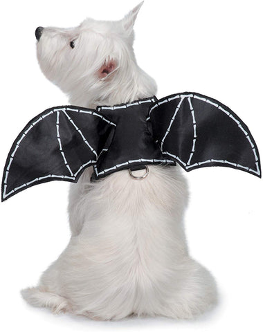 Zack & Zoey Glow-in-The-Dark Bat Wings Harness Costume for Dogs S