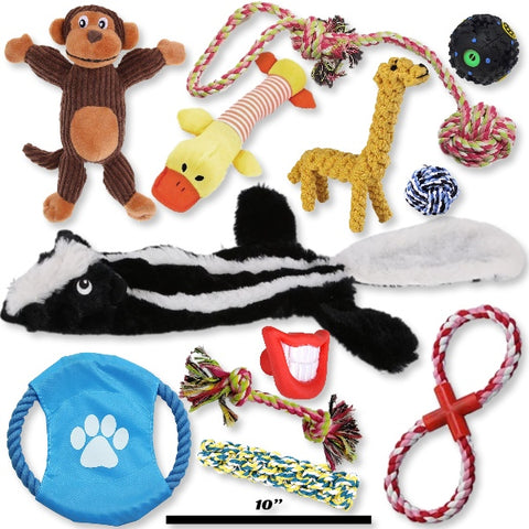 Pets Go Here Rope and Squeak Stick Dog Toys 12 Piece Toy Kit