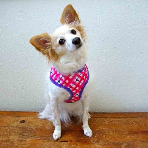 ESC Hugs & Kisses Dog Harness X-SMALL-DOG-East Side Collection-Pets Go Here cat, dog, dog clothes, dog harness, east side collection, fleece, harness, pink, purple, xs Pets Go Here, petsgohere