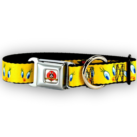 Buckle Down Tweety Bird Dog Collar-DOG-Buckle Down-LARGE-Pets Go Here buckle down, cartoon, character, collar, dog collar, fashionable, l, m, movie, new, nylon, pet collar, s, seatbelt, test, trendy, tv show, xl, xs Pets Go Here, petsgohere