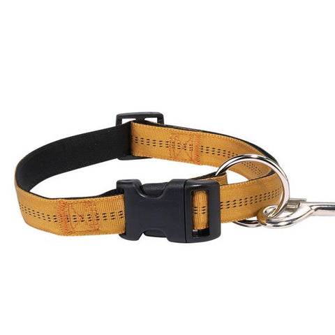 Zack and Zoey Padded Dog Collar Gold-DOG-Zack & Zoey-18-26 In-Pets Go Here