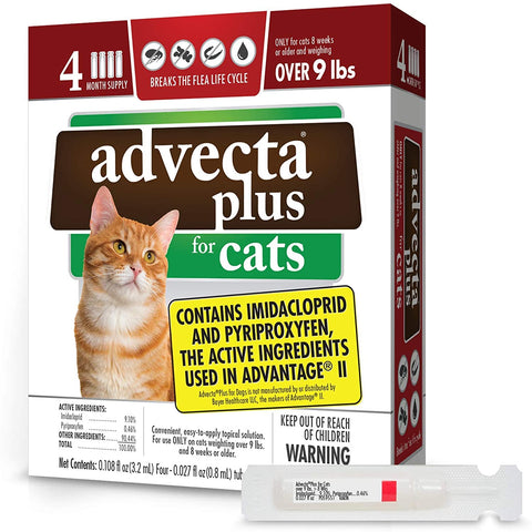 Advecta for Cats