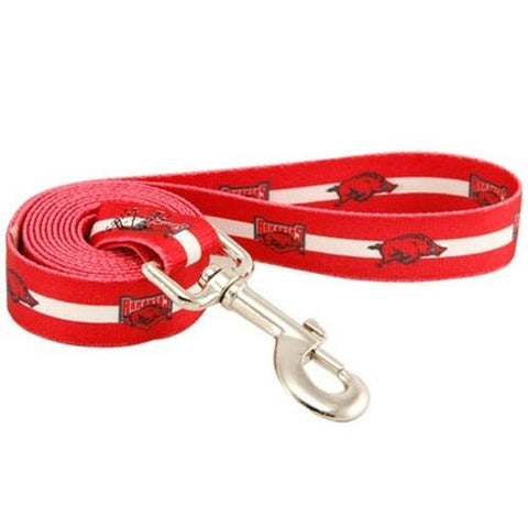 Arizona Diamondbacks Dog Leash-DOG-Hunter-Pets Go Here