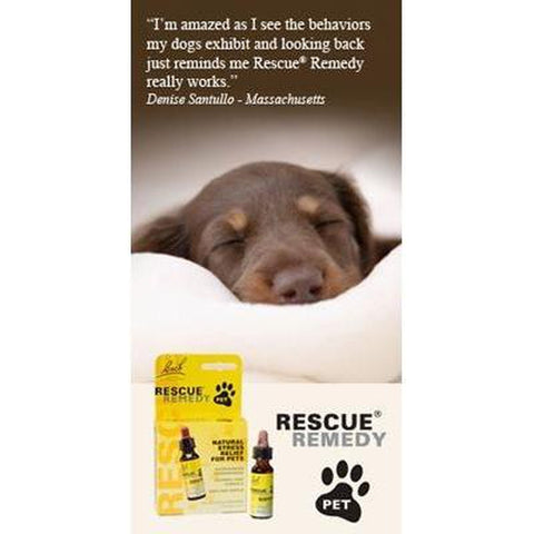 Nelson Back Rescue Remedy Dog 10 ml-DOG-Merial-Pets Go Here