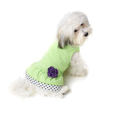Petrageous Polka Dot Ruffle Dress SMALL-DOG-Petrageous-Pets Go Here green, lime, lime green Pets Go Here, petsgohere