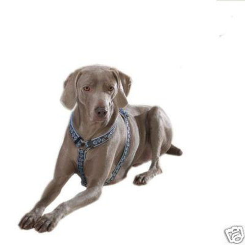 "Guardian Gear BLUE Hibiscus Flower Dog Harness 28""-36""-DOG-Guardian Gear-Pets Go Here blue, guardian gear, harness, nylon Pets Go Here, petsgohere"